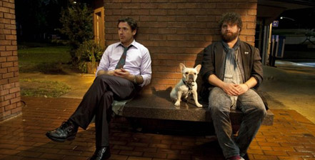 Due Date movie reviews and rankings