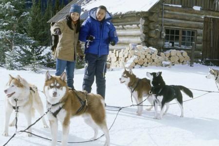 Snow_dogs131010143814snow_dogs_7