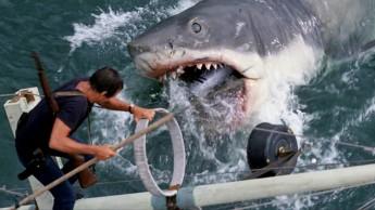 Jaws_3_shark